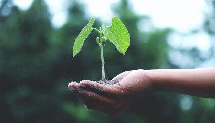 Nachhaltigkeit im E-Commerce bei Akeneo